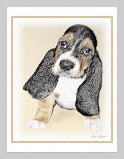 6 Basset Puppy Note or Greeting Cards