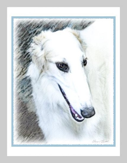 6 Borzoi Russian Wolfhound Note or Greeting Cards