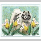 "6 Keeshond Note or Greeting Cards """"Keeshond in the Tulips"""""
