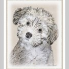 6 Havanese Puppy Note or Greeting Cards