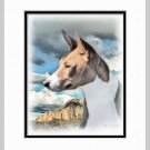 Basenji Dog Art Print Matted 11x14