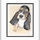 Basset Hound Puppy Dog Art Print Matted 11x14
