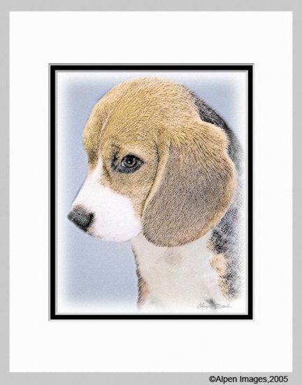 Beagle Dog Art Print Matted 11x14