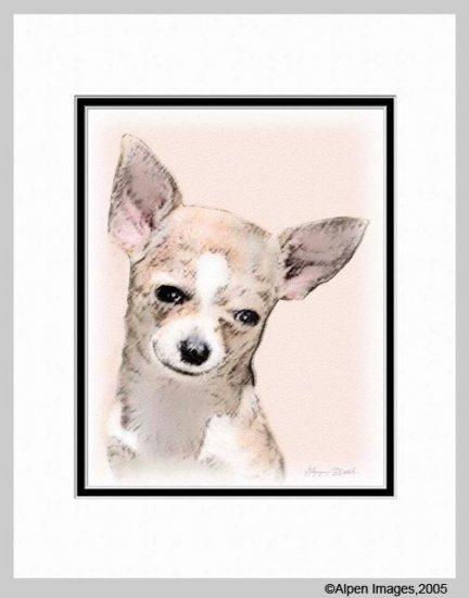Chihuahua Dog Art Print Matted 11x14
