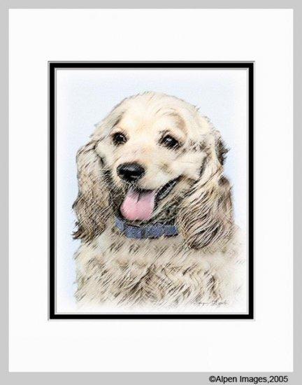 Cocker Spaniel Buff Matted Dog Art Print 11x14