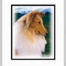 Collie Matted Dog Art Print 11x14