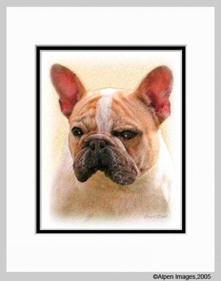 French Bulldog Frenchie Matted Dog Art Print 11x14