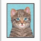Gray Cat Art Print Matted 11x14