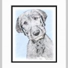 Irish Wolfhound Dog Art Print Matted 11x14