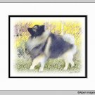 Keeshond Dog Print Strolling in the Aspen Matted 11x14