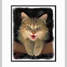 Mad Yellow Cat Art Print Matted 11x14