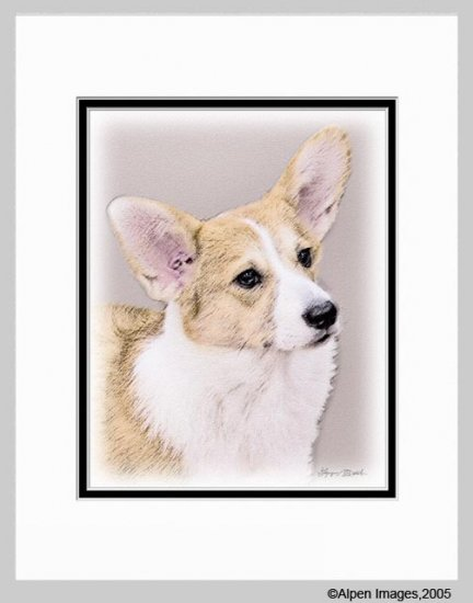 Welsh Corgi Dog Matted Art Print 11x14