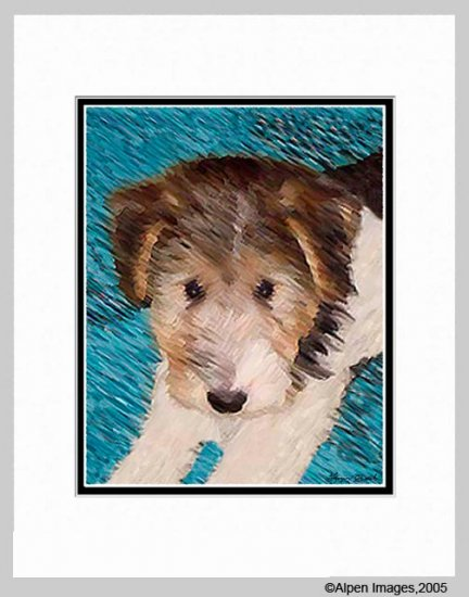 Wire Hair Fox Wired Terrier Puppy Print Matted 11x14
