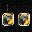Chesapeake Bay Retriever Dog Jewelry Earrings Handmade