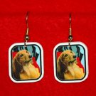 Dachshund with German Flag Earrings Jewelry Handmade
