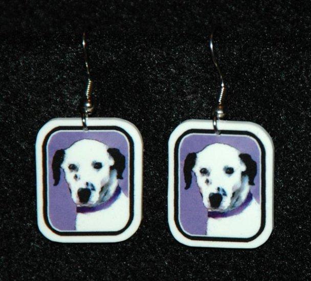 Dalmation Jewelry Earrings Handmade