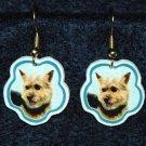 Norwich Terrier Earrings Jewelry Handmade