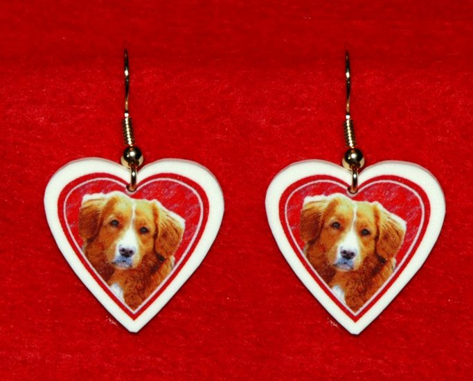 Nova Scotia Duck Tolling Retriever Dog Heart Earrings