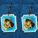 Shar Pei Earrings Jewelry
