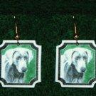Weimaraner Jewelry Earrings Handmade