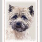 6 Cairn Terrier Note or Greeting Cards