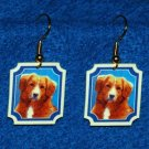 Nova Scotia Duck Tolling Retriever Earrings Handmade