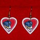 Bernese Mountain Dog Heart Valentine Earrings Jewelry
