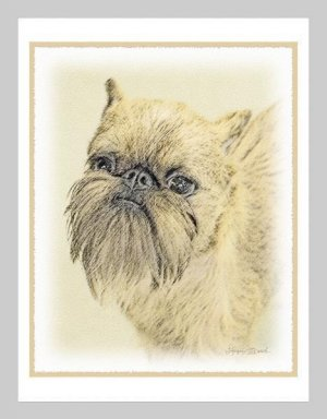 6 Brussels Griffon Note or Greeting Cards