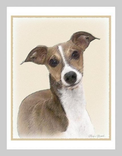 6 Italian Greyhound Note or Greeting Card