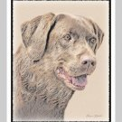 6 Chocolate Lab Labrador Retriever Note or Greeting Cards
