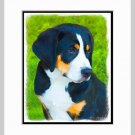 Bernese Mountain Dog Puppy Art Print Matted 11x14
