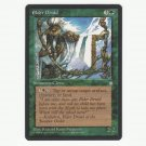 Elder Druid Ice Age  NM  Magic The Gathering MTG
