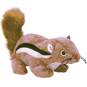 (12) CHIPPER The Chipmunk TY Beanie Babies DOZEN NWT