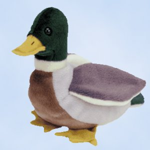(9) Ty JAKE The Mallard Duck Beanie Babies NEW MWT