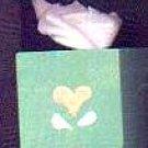 Bath Tissues - Green / Peach - Wooden Miniature