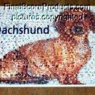 Amazing Dachshund Dog Montage art like no other LOOK!  limited signed coa 1-25
