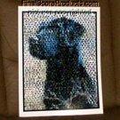 Amazing Black Lab Chocolate Labrador Dog Montage limited signed coa 1-25