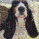 Amazing Basset Hound Dog Montage pop art print limited signed coa 1-25