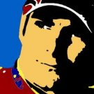 SC Jeff Gordon pop art print 1 of 25 w/signed COA