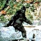 Amazing Bigfoot sighting Yeti Sasquatch Keychain viewer