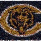 Best Bar Game Room Chicago Bears Sign EVER framed w/COA