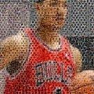 Amazing Chicago Bulls Derrick Rose NBA Montage w/COA
