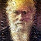 Amazing Charles Darwin Wild Animals Montage Limited COA