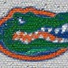 Amazing Florida Gators The Sunshine State Montage COA