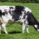 Amazing Black + White Cow Wild Animals Montage Print