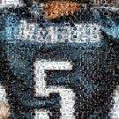 Amzng Philadelphia Eagles Donovan McNabb JERSEY Montage