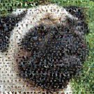 Amazing Pug Dog Montage Limited Edition art print COA