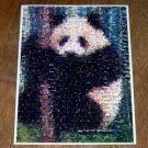 Amazing PANDA Wild Animals Montage