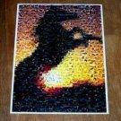 Amazing Wild Horse at Sunset Montage art print w/COA