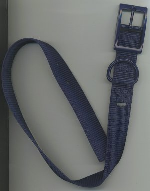 Navy blue one inch wide dog collar with metal buckle for size 16-20 inch neck